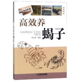 高效养蝎子 养殖 编者:周元军 新华正版