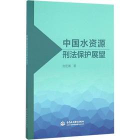 中国水资源刑法保护展望