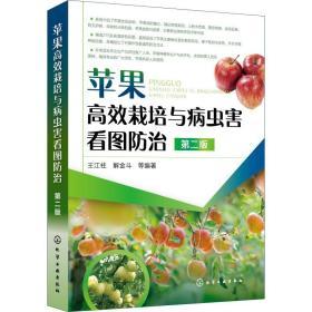 苹果高效栽培与病虫害看图防治 第2版 种植业 王江柱 等 新华正版