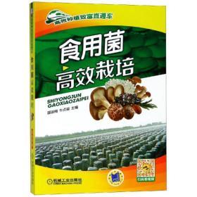 食用菌高效栽培 种植业 编者:国淑梅//牛贞福 新华正版