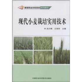 现代小麦栽培实用技术 种植业  新华正版