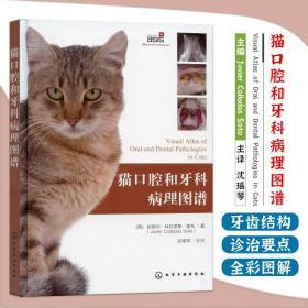 猫口腔和牙科病理图谱 猫牙科病理图谱治疗手册 犬猫组织学牙齿结构 犬猫齿系图谱 小动物牙周探查图例 宠物医生兽医入门参考书籍