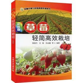草莓轻简高效栽培彩图版 中国农业出版社 9787109268760设施农业与轻简高效系列丛书 草莓栽培高效种植书籍