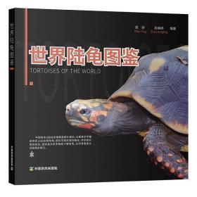 世界陆龟图鉴 周婷 周峰婷编著 陆龟种类主要特征生活习性18属54种陆龟科普 陆龟起源演化陆龟保护利用陆龟养殖技术 世界陆龟分类
