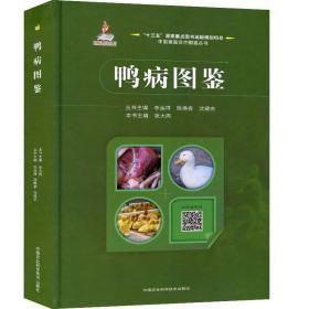 鸭病图鉴 中国农业科学技术出版社 鸭病毒性疾病鸭病书籍鸭病学养殖书籍鸭病防控技术科学养鸭书养殖类书籍
