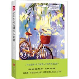 流年里美的单车斜阳 散文 包利民 新华正版