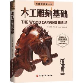木工雕刻基础 民间工艺 (美)安东尼·丹宁 新华正版