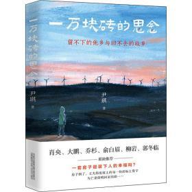 一万块砖的思念 情感小说 尹琪 新华正版