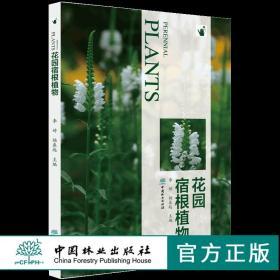 花园宿根植物 9808 常用宿根植物种类介绍 花卉培育栽培繁殖宿根与球根植物搭配病虫害 容器花园私家庭院花园花艺景观 畅销书