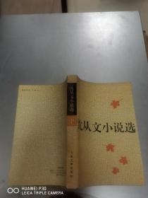 中国文库·文学类:沈从文小说选 .下册