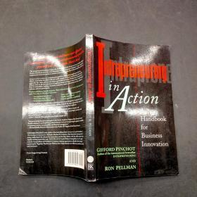 Intrapreneuring in Action: A Handbook for Business Innovation-行动中的内部创业:商业创新手册