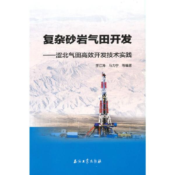 复杂砂岩气田开发——涩北气田高效开发技术实践