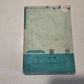 香港台湾与海外华文文学丛书:窗外