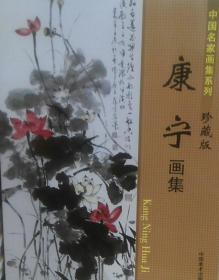 康宁珍藏版、画册、图录、作品集