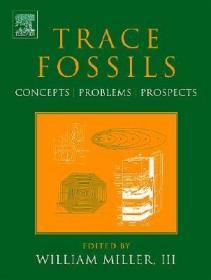 预订Trace Fossils