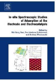 预订In-situ Spectroscopic Studies of Adsorption at the Electrode and Electrocatalysis