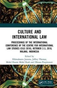 预订Culture and International Law: Proceedings of the International Conference of the Centre for International Law Studies (Cils 2018), October 2-3, 2018