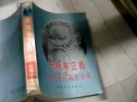 世界名人文学传记丛书 天地有正义:列夫.托尔斯泰传(上册)