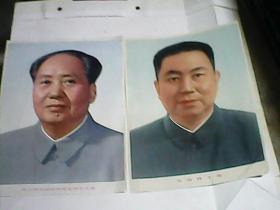 伟大的领袖和导师毛泽东主席  , 华国锋主席  彩色画像