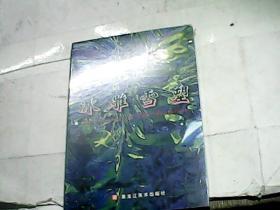 冰雕雪塑(48开本/2005-10一版一印全新未开封)