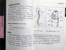 【颅骶疗法】张佳棻 翻译,品佳。颅骶疗法又译头 荐 骨动力疗法,据说起源于美国整骨师威廉·G·萨瑟兰