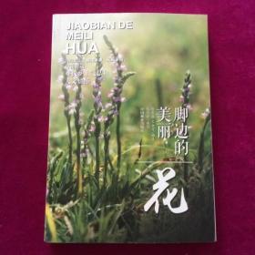 脚边的美丽(花) 王金虎  著;陶隽超 中国林业出版社