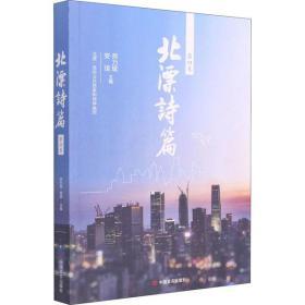 北漂诗篇 第4卷师力斌中国言实出版社9787517116394文学
