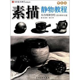 素描静物教程王宇祥 编著;赵锦杰9787539878805安徽美术出版社艺术
