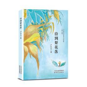 待到梨花落卢小夫天津人民出版社9787201168432文学
