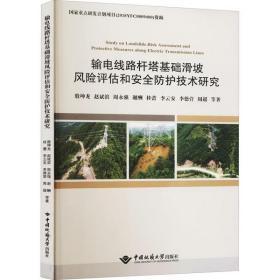 输电线路杆塔基础滑坡风险评估和安全防护技术研究殷坤龙中国地质大学出版社9787562549970工程技术