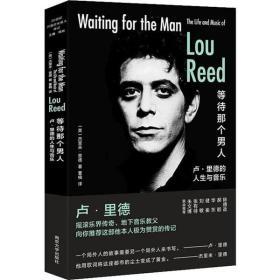 等待那个男人 卢·里德的人生与音乐杰里米·里德9787305209031南京大学出版社工程技术