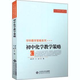 初中化学教学策略胡久华9787303106660北京师范大学出版社艺术