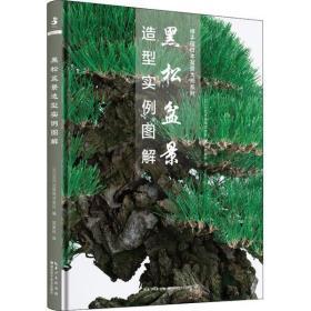 黑松盆景造型实例图解近代出版株式会社湖北科学技术出版社9787570607235工程技术