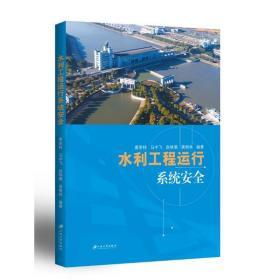 水利工程运行系统安全唐荣桂等江苏大学出版社9787568413947工程技术
