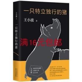 二手正版 一只特立独行的猪 王小波 北京十月文艺出版社