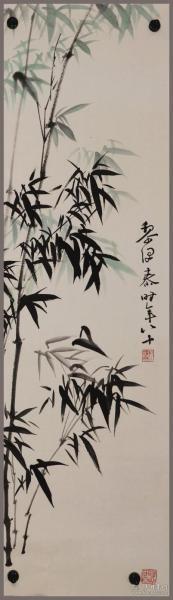 黎泽泰,竹子