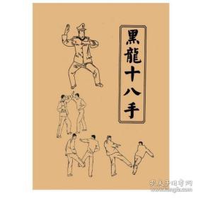 黑龙十八手擒拿术军体拳格斗术组合防身术反擒拿招式训练实战功法