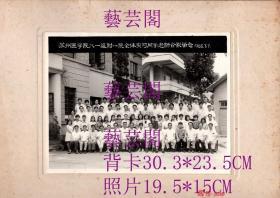 1986年苏州医学院八一级附一院全体实习同学老师合影留念19.5*15CM