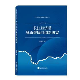 长江经济带城市群协同创新研究   苏国兵 著 武汉大学出版社
