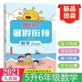 2022阳光同学(暑假衔接)数学(人教)5升6年级(21.4)