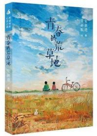 青春的荒草地/常新港经典长篇系列(常新航绘 天天出版社)正版