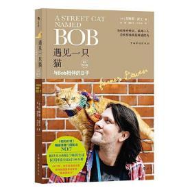 遇见一只猫 与BOb相伴的日子 A Street Cat Named Bob 一只名叫鲍勃的流浪猫 中文版 流浪猫鲍勃书当bob来敲门流浪猫鲍勃电影小说