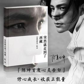 突然就走到了西藏 陈坤的书 正版行走的力量 散文随笔心灵旅行 中国山水关于西藏的书 文化书籍 文学畅销书 华东师范大学出版社