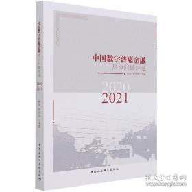 中国数字普惠金融热点问题评述-((2020-2021))