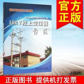 10kV柱上变压器台区/配电设施典型工艺图册