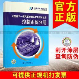 控制系统分册/大型燃气—蒸汽联合循环发电技术丛书