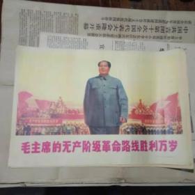 宣传画 毛主席的无产阶级革命路线胜利万岁(印刷品)