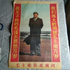 宣传画 毛主席在北戴河(印刷品)
