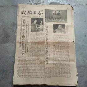 湖北日报 [1一4版]