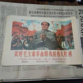 宣传画 欢呼毛主席革命路线的伟大胜利(印刷品)